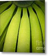 Some Green Fresh Bananas On A Street Fair In Brazil. Metal Print