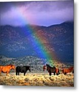 Somewhere Over The Rainbow Metal Print by Jeanne  Bencich-Nations
