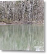 Somewhere There Is A Treeflection Metal Print
