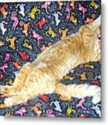 Sonny Cat On Sacred Cat Quilt Metal Print