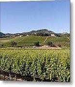 Sonoma County Vineyards Metal Print