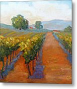 Sonoma Vineyard Metal Print
