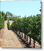 Sonoma Vineyards In The Sonoma California Wine Country 5d24507 Metal Print