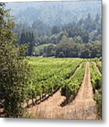 Sonoma Vineyards In The Sonoma California Wine Country 5d24515 Square Metal Print