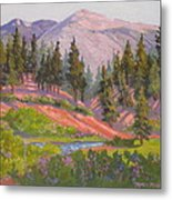 Sonora Pass Meadow Metal Print