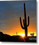 Sonoran Desert Sunrise 4 Metal Print