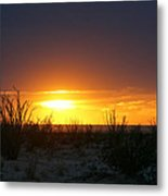 Sonoran Sunset Metal Print