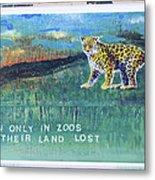 Soon Only In Zoos  Their Land Lost Metal Print