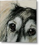 Sophia's Eyes Metal Print