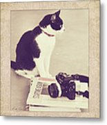 Sophie And The Camera Metal Print