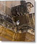 Sophisticated Baroque Bird Perch Metal Print
