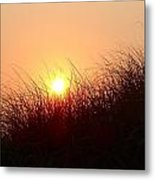 South Beach Dunes At Dawn Metal Print