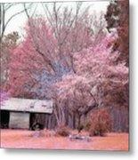 South Carolina Pink Fall Trees Nature Landscape Metal Print