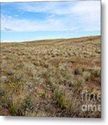 South-central Washington Grassland Metal Print