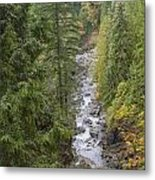 south fork Snoqualmie river Metal Print