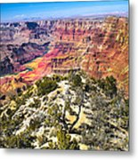 South Rim From The Butte Metal Print by Robert Bales