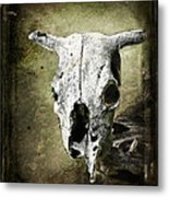 South West Scull Metal Print