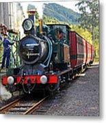 South West Wilderness Railway Metal Print