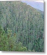 Southeast Forest Ridges Metal Print