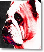 Southern Dawg By Sharon Cummings Metal Print