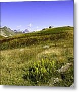 Southern France The Alps Metal Print