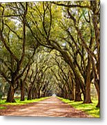 Southern Journey Paint Metal Print