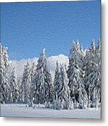 Southern Oregon Forest In Winter Metal Print