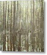 Southern Swamp Metal Print