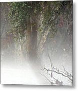 Southern Trees Have Curves Metal Print