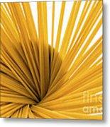 Spaghetti Spiral Metal Print