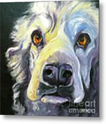 Spaniel In Thought Metal Print