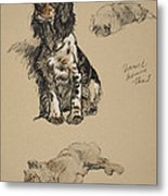 Spaniel, Pekinese And Chow, 1930 Metal Print