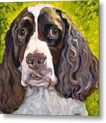 Spaniel The Eyes Have It Metal Print by Susan A Becker