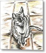 Spanish Cat Waiting Metal Print