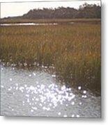 Sparkling  Marsh Metal Print