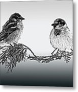 Sparrow Digital Art Metal Print
