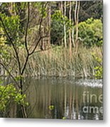 Sparrow In A Tree Metal Print