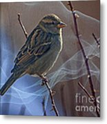 Sparrow In A Weave Metal Print