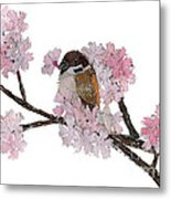 Sparrow Art  Metal Print