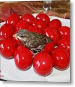 Sparrow On Red Eggs Metal Print