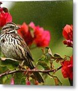 Sparrow Song 8 Metal Print