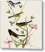 Sparrows And Bunting Metal Print