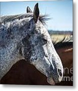 Speckled Gray Metal Print