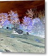 Spectral Wilderness And Copper Sky Metal Print