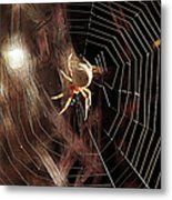 Spider - Building A Ferris Wheel Metal Print