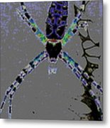 Spider Spider On The Wall Metal Print by Rebecca Flaig