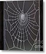 Spider Web With Frost Metal Print