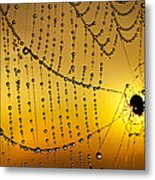 Spiders Heaven Metal Print