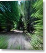 Spinning Through The Woods Metal Print