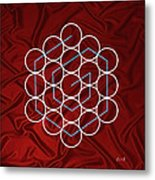Spiral Of Evolution Expand Your Perception  Metal Print